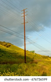 Electrical utility pole surrounded by wild flowers