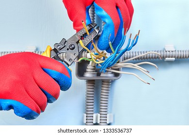 electrician in protective gloves is cutting copper wiring of household  power grid with help of wire