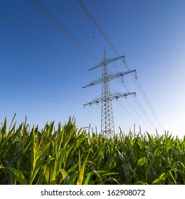 Electricity pylon power pole high voltage against blue sky with corn field