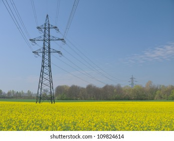 Electricity pylons in an oilseed field