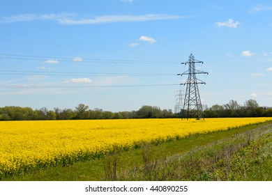 Electricty pylons crossing rapseed field on farm in English countryside