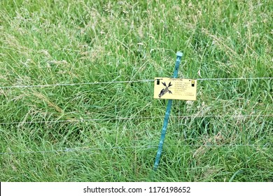 Electrified fencing with warning sign on a grass turf.