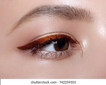 Elegance close-up of beautiful female eye with fashion trend bright colors eyeshadow and eyeliner. Macro shot of beautiful woman's face part with makeup. Cosmetics, beauty and make-up
