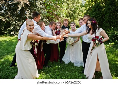 Elegance wedding couple with bridesmaids and best mans drinking champagne. Ten people.
