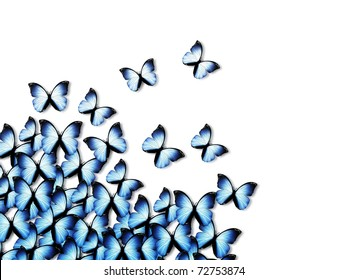 elegant abstract background with blue butterflies