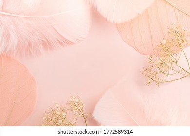 Elegant  background with gentle decorations angelic feathers and dry flowers
