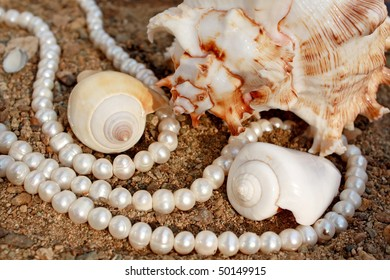 Elegant background with pearls and sea cockleshells
