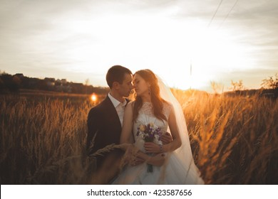 Elegant beautiful wedding couple posing in park at sunset