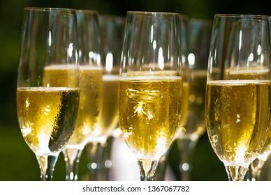Elegant champagne glasses close up image