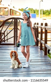 Elegant child near puppy breed cocker spaniel,charles king.Beautiful young girl stands bridge pier. Lady's vogue,blue striped dress,marine style,cruise,summer.Designer collection.Fashion kid concept.