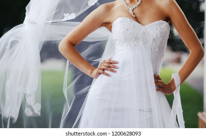 Elegant and classy wedding dress for the bride