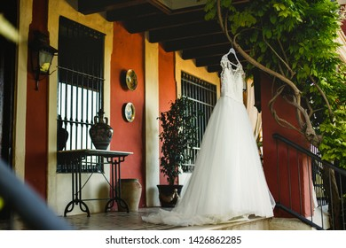 Elegant and clean white wedding dress, nobody, hanging from a tree on the day of the wedding waiting for the bride to dress.
