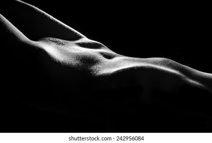 Elegant curves of female hips and abdomen
