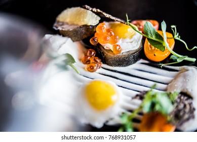 elegant food modern cuisine
