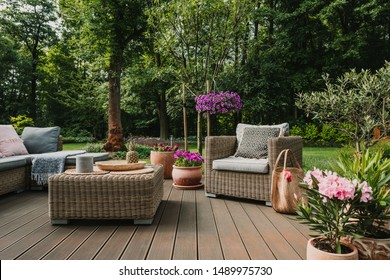 Elegant garden furniture on terrace of suburban home