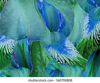 Elegant and gestural Iris background illustration.