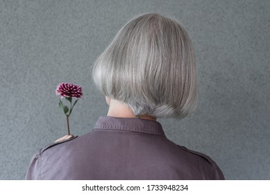 Elegant gray-haired woman holding red dahlia flower, on gray background.