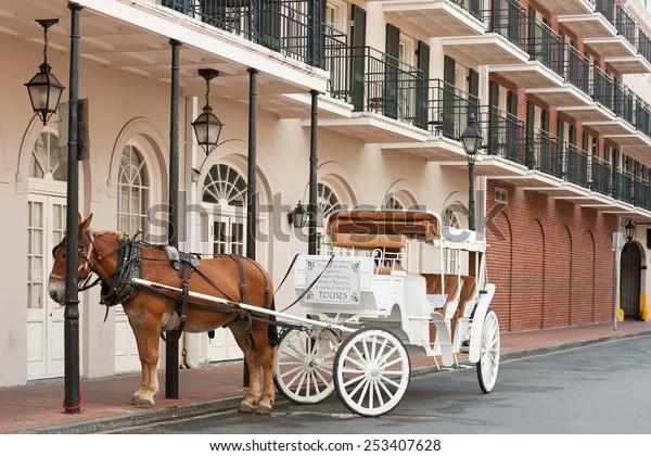 Elegante Pferdekutsche im Französischen Viertel, New Orleans