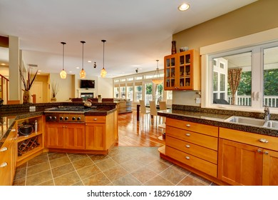 Elegant interior. Spacious kitchen room. View of large living room
