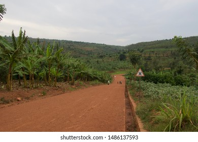 Elegant landscape at Africa, Rwanda. You will not be able to find this nature any other places.