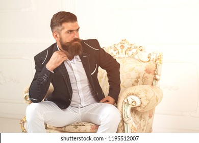 Elegant man with beard in business suit sitting in studio on armchair. He will melt your heart. Handsome young sexy bearded man in full suit and looking away while sitting on the armchair