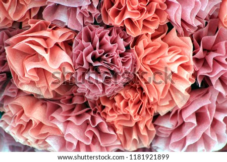 Elegant Pink Coral Tissue Paper Crepe Stock Photo Edit Now
