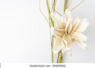 Elegante Frühlingsblume, gefälschte Gärten auf weißem Hintergrund. Zum Hochzeitshintergrund.