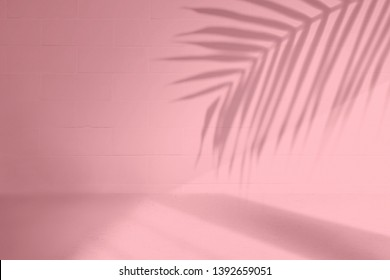 Elegant summer tropical backdrop in pink