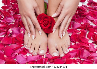 Elegant woman's hand with manicure and feet with pedicure on red rose petals background.