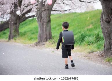 Elementary school boy going to school