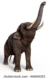 elephant 3d illustration