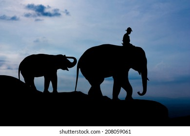 Elephant and baby on the mountain twilight time