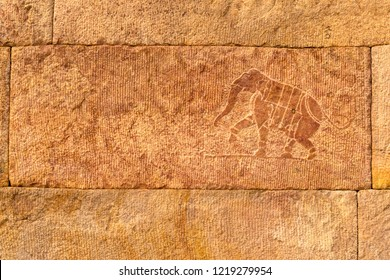 Elephant Carving  in gandikota Temple, Kadapa, Andhra Pradesh, India