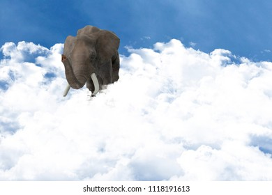 elephant in clouds