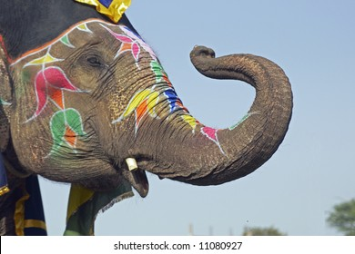 Elephant decorated with art work on its face saluting with its trunk at an elephant festival in India