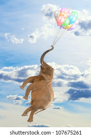 Elephant Flying With Balloons, Outdoor