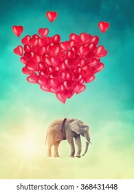 Elephant flying with balloons in the sky