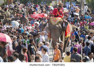 a elephant fontain at the Elephant Round-up Festival in the city of Surin in Northeastern Thailand in Southeastasia, November 20, 2015. .