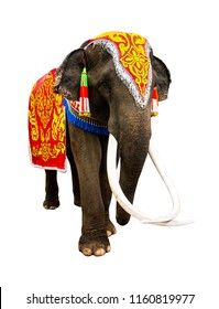 Elephant has beautiful and large isolated on white background. colorful painted elephant head ,Decorated elephants in Thailand.