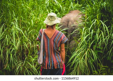 Elephant keeper waiting for his animal who escape to the jungle.
