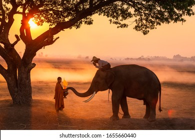 Elephant made merit a monk's bowl. Thai people and elephant jointly give alm to monk. elephant and Monk in forest. vintage style. The activities at Krapho, Tha Tum District, Surin, Thailand
