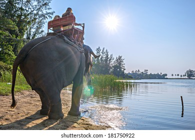 Elephant riding for tourists in Phuket Province, Thailand
