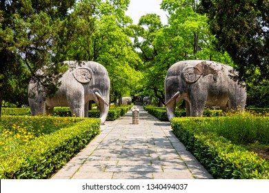 Elephant statues in the sacred way in Ming Xiaoling Mausoleum, located on mount Zijin, Nanjing, Jiangsu Province, China. Ming Xiaoling Mausoleum is UNESCO World Heritage Site