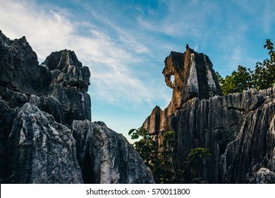 Elephant stone in sunset in Stone Forest in Shilin, Yunnan Province, South China, not far from the  Kunming. It is the world-famous natural area of limestone formations and UNESCO World Heritage Site.