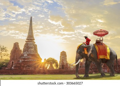 Elephant for Tourists on an ride tour of the ancient city in sunrise background