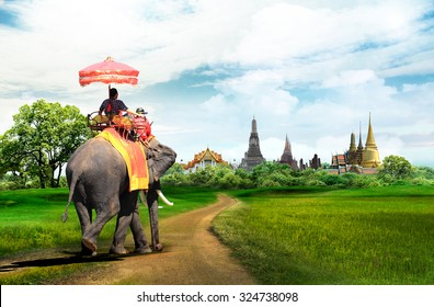 Elephant for tourists on an ride tour in Bangkok, Thailand, concept
