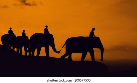 Elephant travel at mountain in Thailand Asia