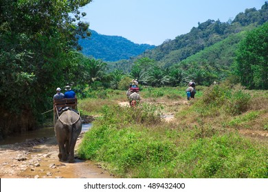 Elephant trekking at Kao-sok, Thailand