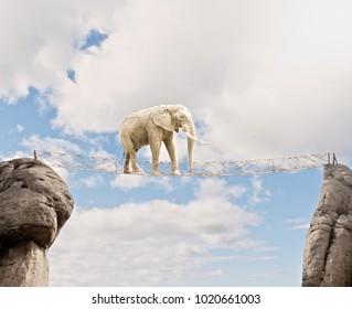 elephant walking througa wooden bridge on a cloudy sky