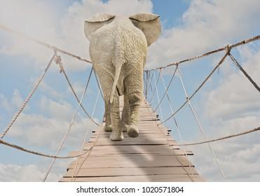 elephant walking through wooden bridge on a cloudy sky